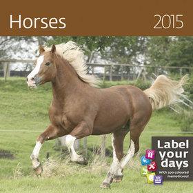 Kalendarz 2015. Kalendarz ścienny miesięczny. Konie - rozmiar 30 x 30cm + naklejki