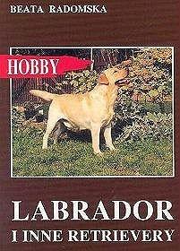 Labrador i inne retrievery