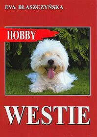 Westie. West Highland White Terrier