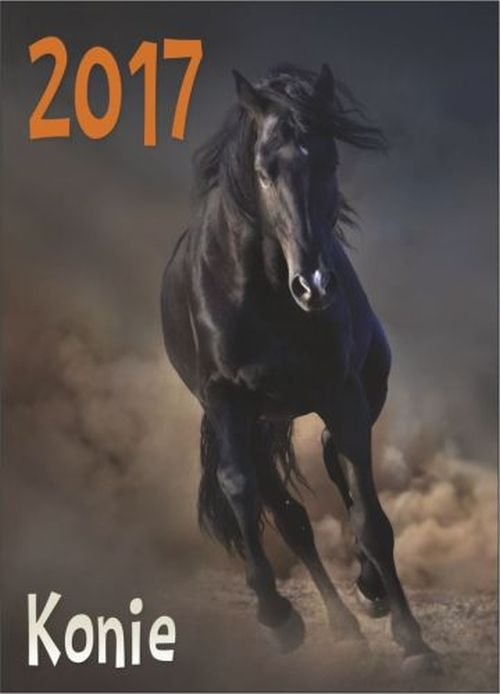 Kalenadrz 2017 Konie