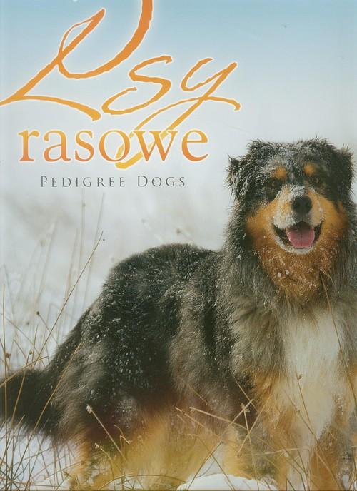 Kalendarz 2013. Kalendarz ścienny - Psy rasowe