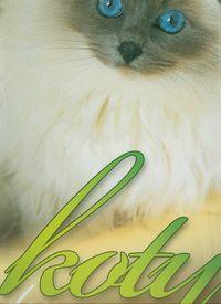 Kalendarz 2013 RW 21 Koty domowe