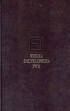 WIELKA ENCYKLOPEDIA PWN T.21